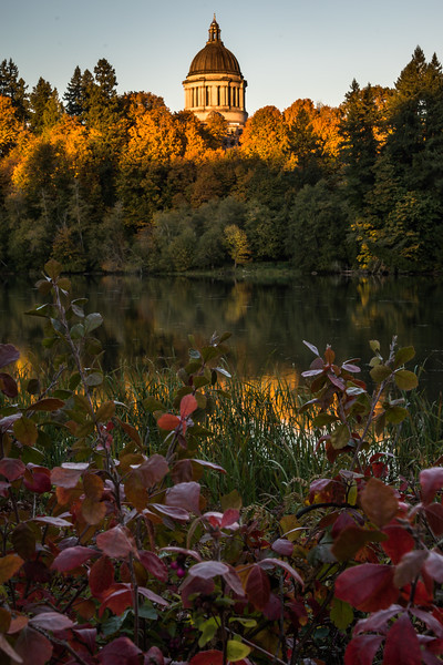 Fall Colors at Capitol Lake and State Capitol