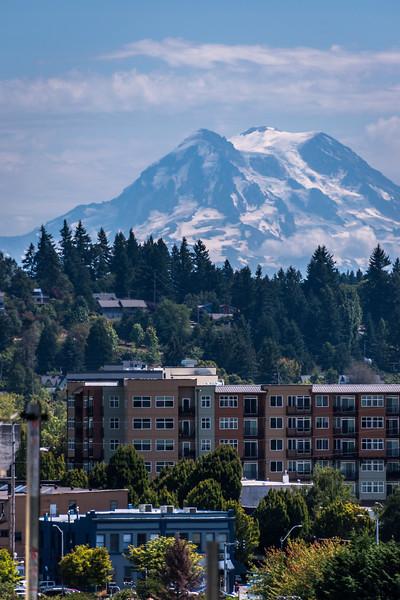 Mt Rainier & Downtown Olympia