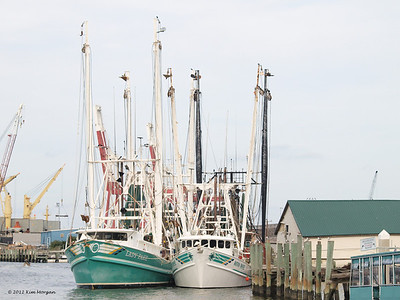 Marina at Amelia Island, FL.