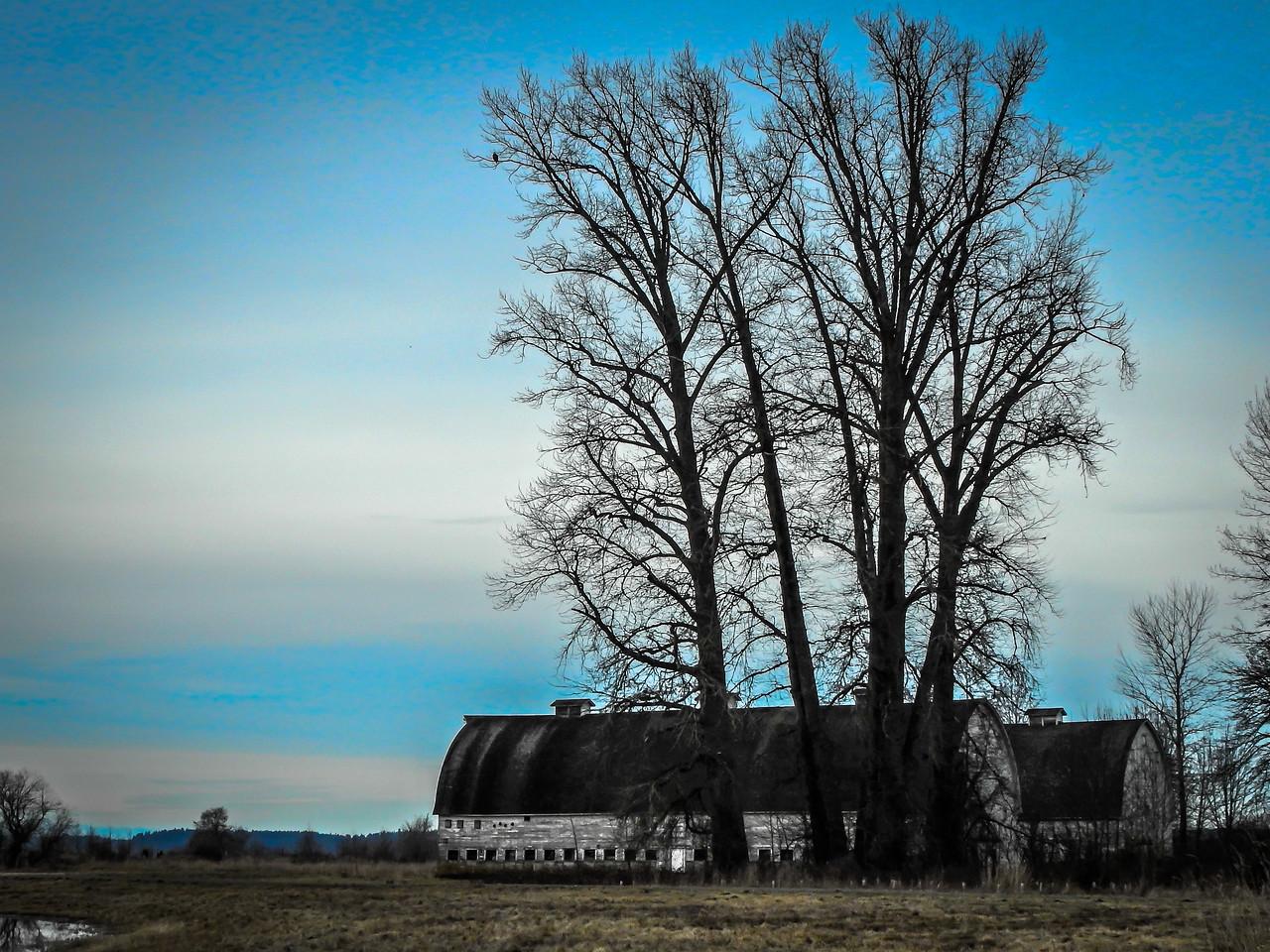 Nisqually Twin Barns