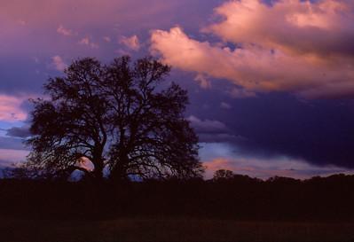 Sunset. Folsom ,Ca