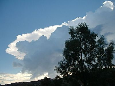 Early morning clouds from home -- 24 Aug 2003