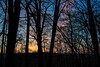 Featured:  Dawn clouds