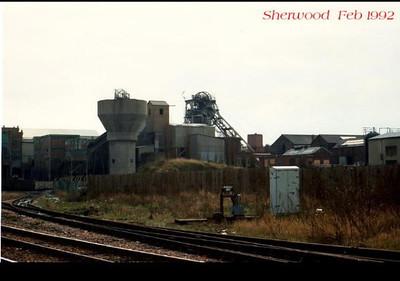 Sherwood%20a1