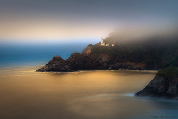 """Gold Glow at Heceta""  - Oregon"