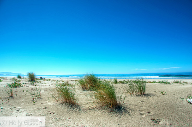 Beach at the end of the south trail - Cape Lookout State Park