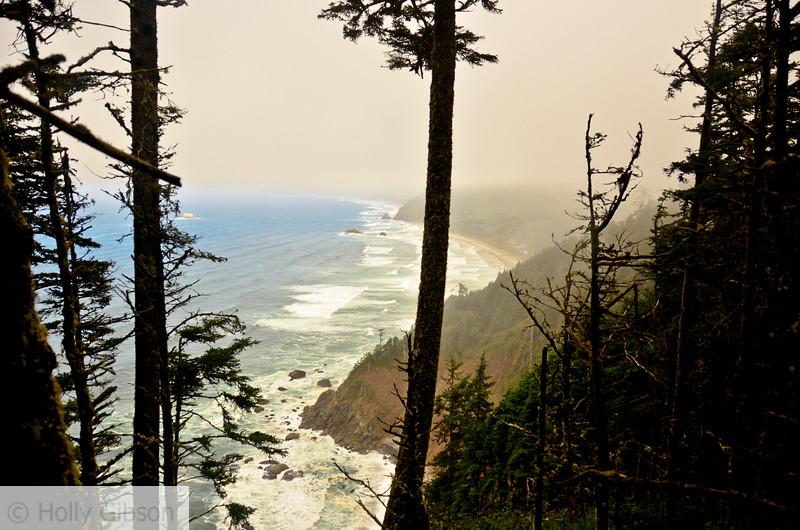 Coastline of Cape Falcon from trail
