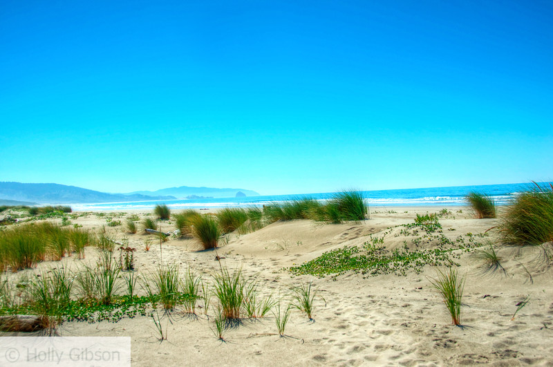 Beach at Cape Lookout State Park - South Trail