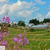 Farm in Sackville, New Brunswick