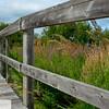 Boardwalk in Sackville, New Brunswick - 55