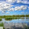 Waterfowl Park - Sackville, New Brunswick