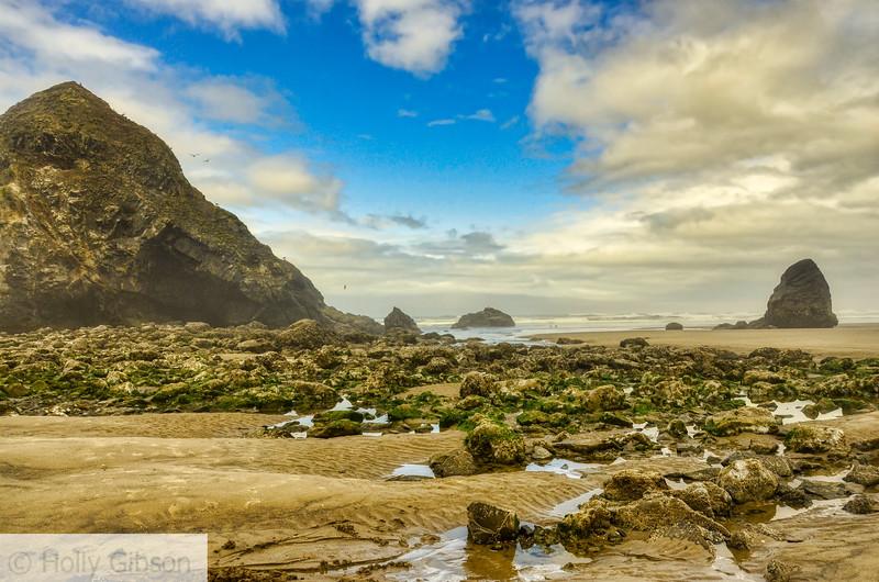 Beach view from Cannon Beach to Cape Falcon trailhead