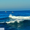 Pelicans flying over waves