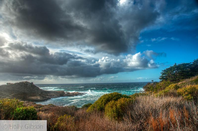 Point Lobos State Park - California