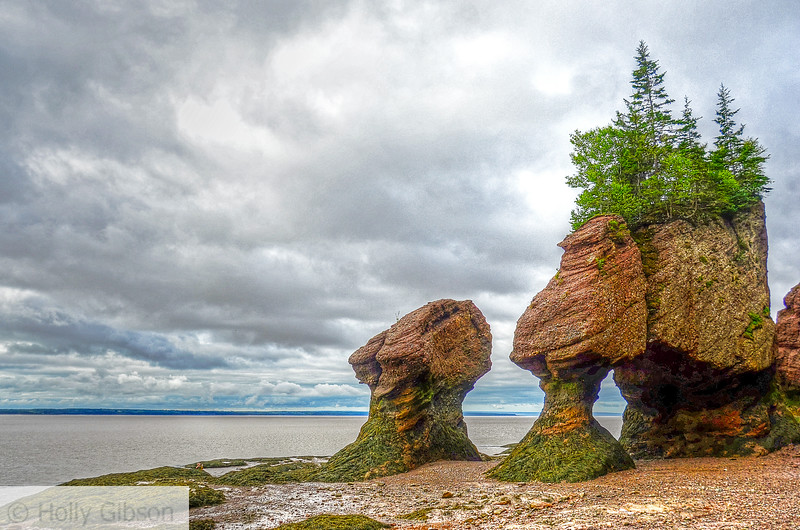 Hopewell Rocks at low tide, New Brunswick - 53