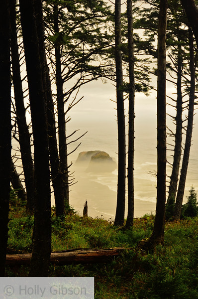 Crescent Beach from trail