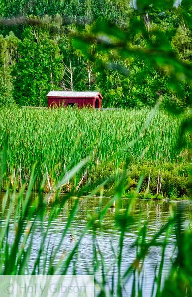 Water Fowl Park - Sackville, New Brunswick - 57
