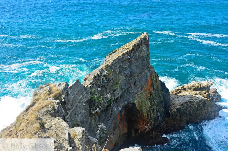 Rocks on the coast - Cape Falcon