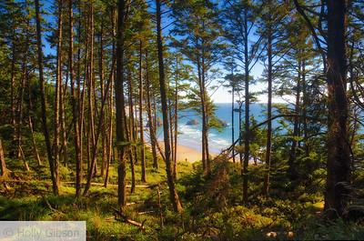 Oregon Coast Trai; above Cannon Beach