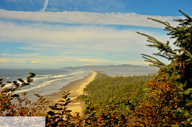 Netarts Spit from north trail - Cape Lookout State Park
