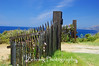Wild flowers adorn this gate entrance to a private beach road off the Pacific Coast Hwy. heading north to Monterey,CA.