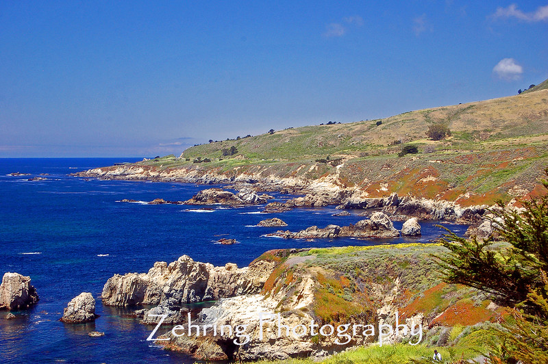 One of the many beautiful vista points off the Pacific Coast Highway between Pismo Beach and Monterey CA.