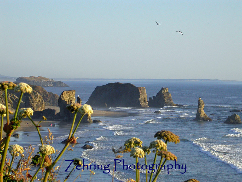 Beautiful overlook  during sunset, off the coast of Oregon.