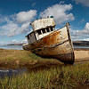 Wreck of the Point Reyes - Tomales Bay - Inverness, California 2012