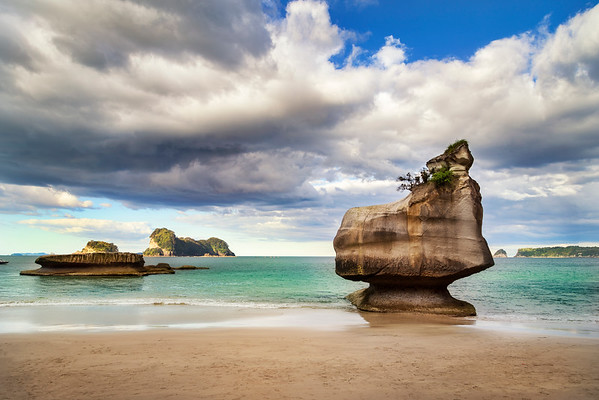 Mare's Leg Cove - Coromandel Peninsula - New Zealand