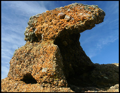 Rock formation, Point Lobos State Park