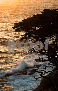 Cypress Sunset Big Sur California