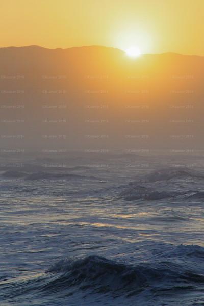 Oceangold
