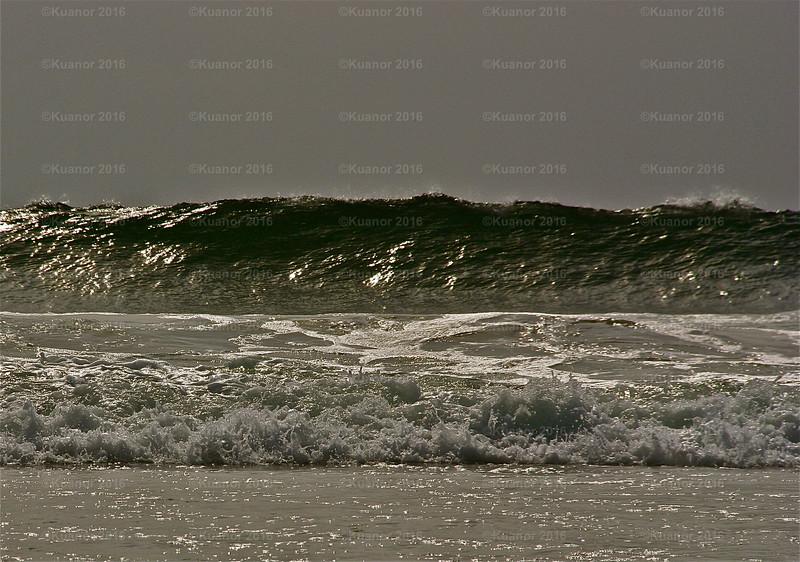Tsunami?