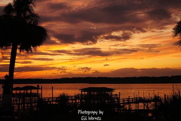 In & Around the Wilmington River near Savannah