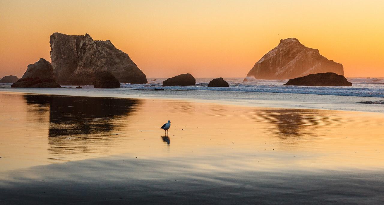 Coastal Landscapes - michaeljackphotography