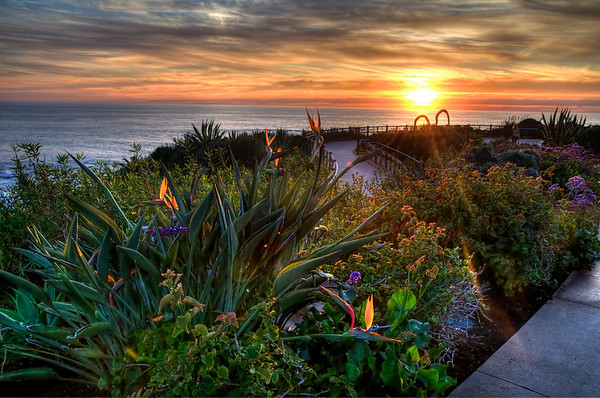 Near the Montage Resort in Laguna Beach at sunset