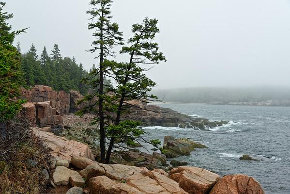 Coastal Maine 2015