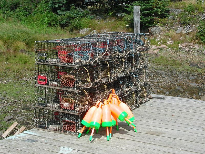 lobster traps & buoys