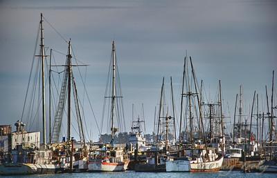 The harbor Bodega Bay California.