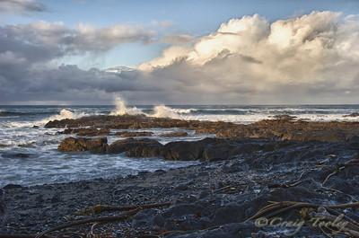 A Rocky shore along the Northern Coast California