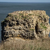 Marsden Grotto and rock