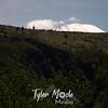 29  G MSH Rim Over Hills