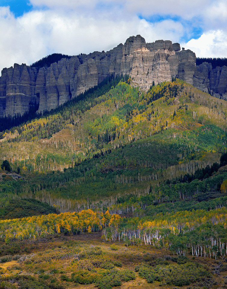 Cliffs and aspen, early fall