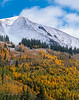 Early season snow, aspens