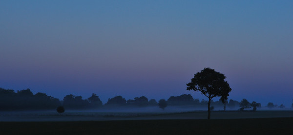 Field before Sunrise - Normandy, France