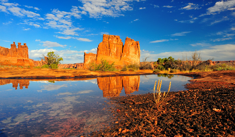 Courthouse Towers Reflection - Arches National Park, Utah