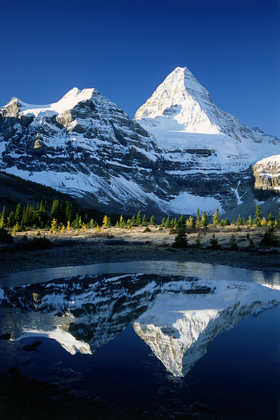 Assiniboine Reflections