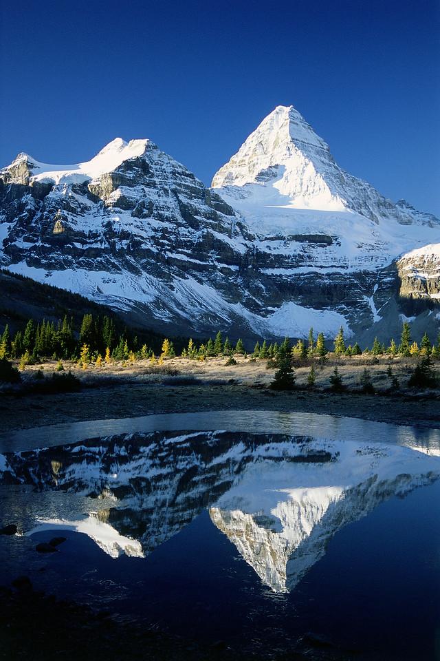 Assiniboine Reflections