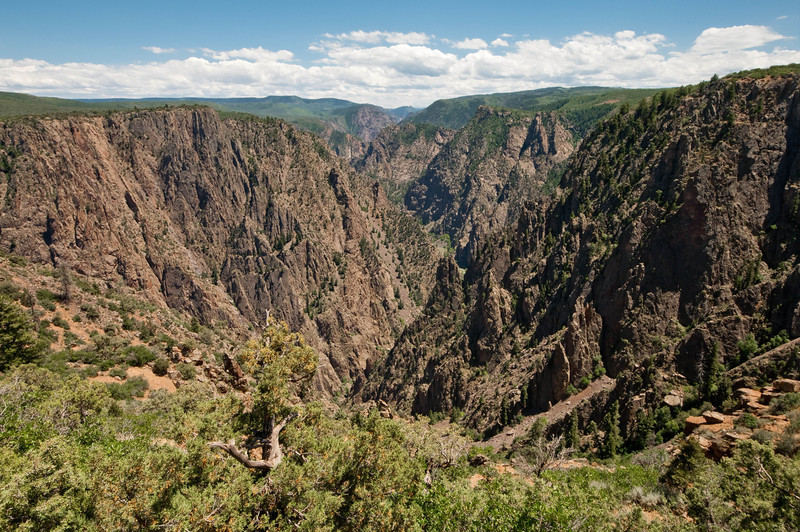Black Canyon of the Gunnison, CO.