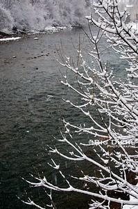 Snowy Animas